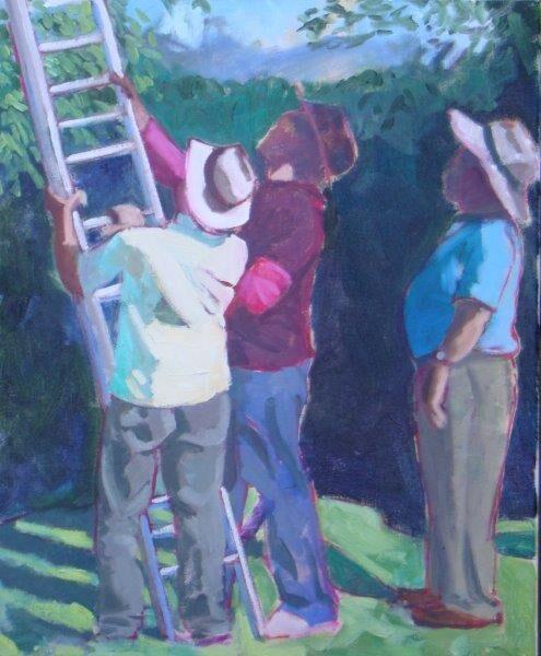Three Men & a Ladder