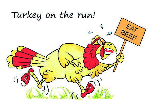 Turkey on the run!