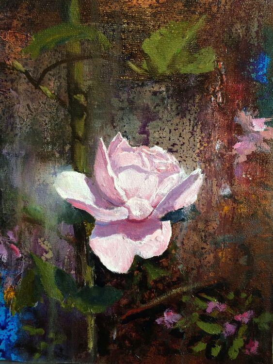Bloom IV : Rose