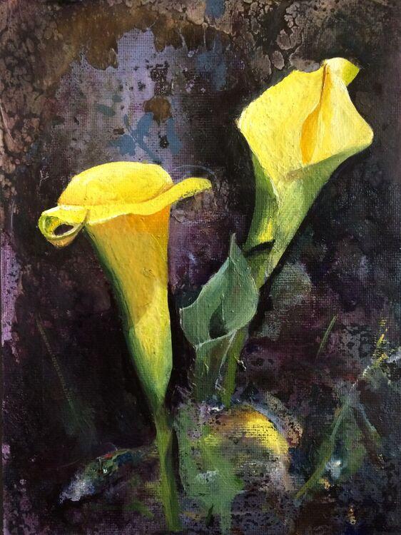 Bloom III : Lilies
