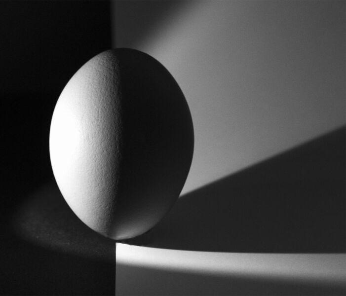 BnW Egg