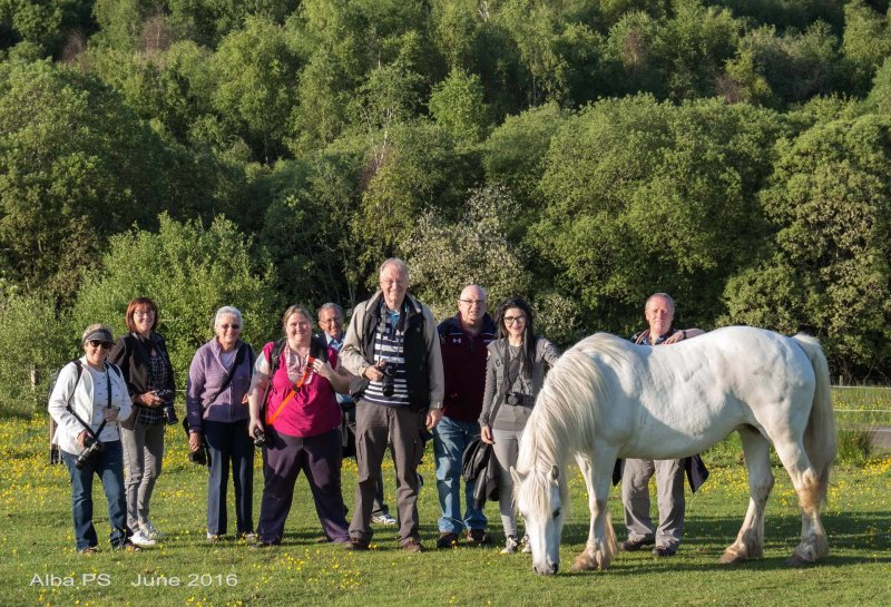 Alba members enjoy a summer night outing to Lanark