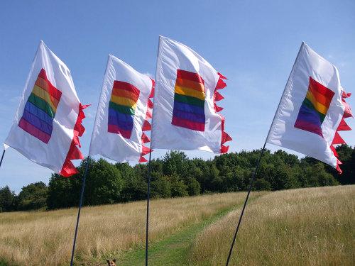 Rainbow flags 2015