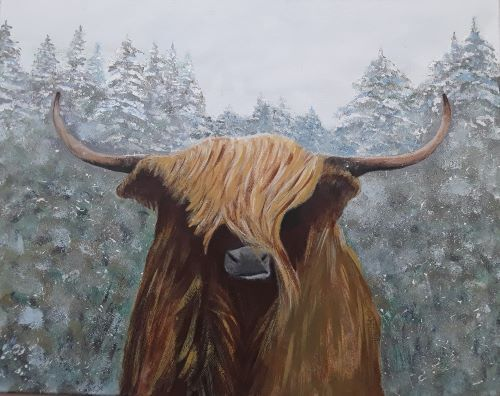 Angus, The Highland Bull by Tony Hughes