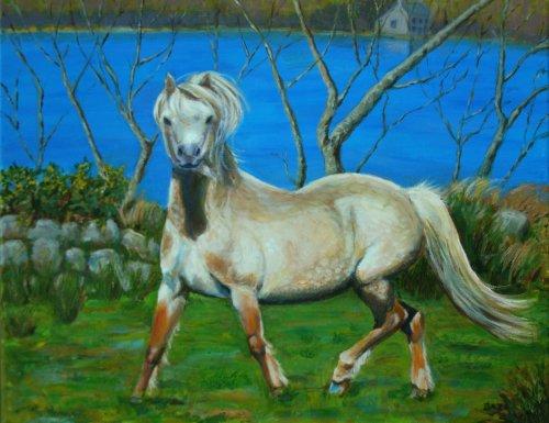 Charlie Wilson's Pony