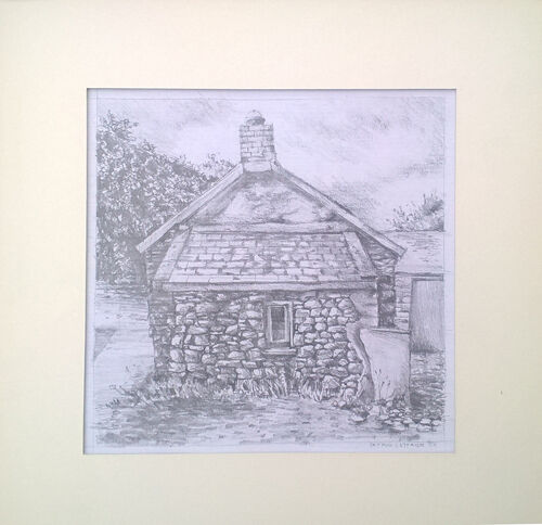 Pembrokeshire Cottage 7