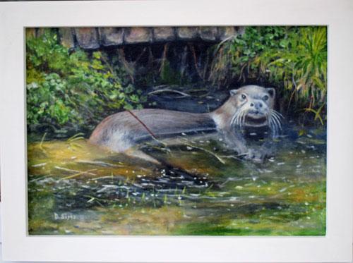 Dog Otter At Roch Mill 111