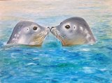 Seals with a Kiss by Maureen Evans