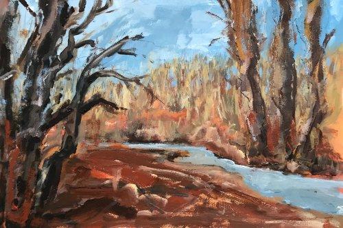 Woodland Stream, St Davids