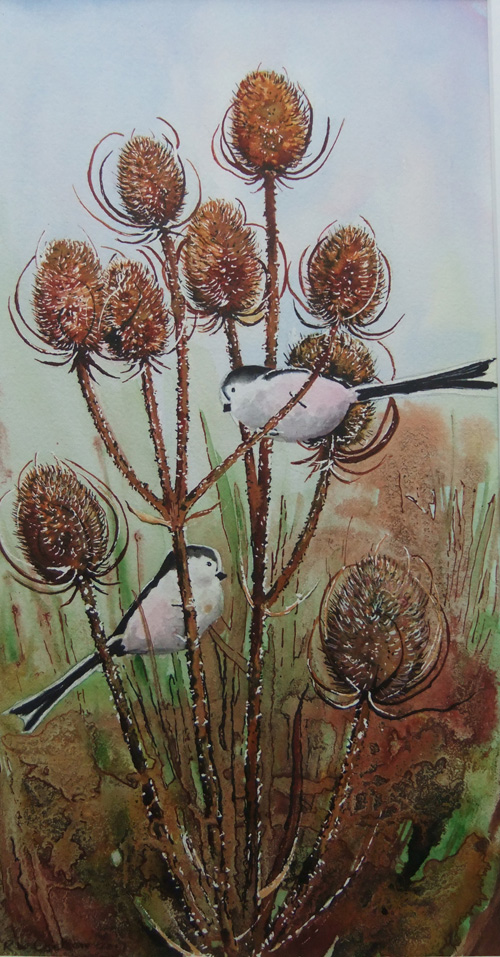 Long-tailed tits by Ruth Coulson