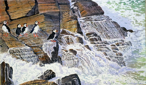 Puffin Parley by Ruth Coulson