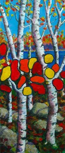 Silver Birches of Canada