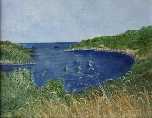 Solva Coastal walk by June Anderson