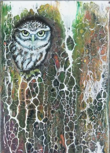 Tawny Owl by Ruth Coulson
