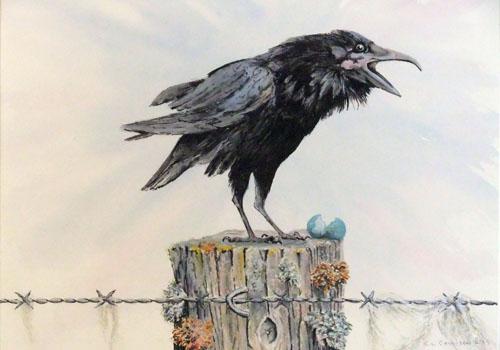 The Upstart Raven