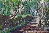Brandy Brook Woods by David Sims