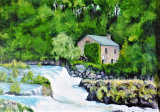 Cenarth Mill and Falls By Dave Sims