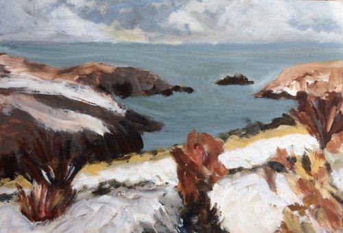 Solva in the Snow by Nicola Schoenenberger