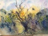 Pembrokeshire Spring, Alison Hemingway