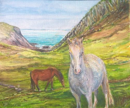 Ponies on the Coastpath at Nine Wells by Chris Sherwin
