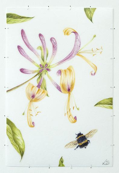 Honeysuckle & Bumble Bee