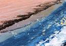 Beach Life, Praia da Falesia