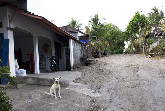 Shanti Lodge, Bali
