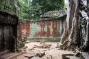 Ta Prohm Temple 3
