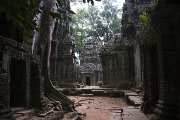 Ta Prohm Temple 4