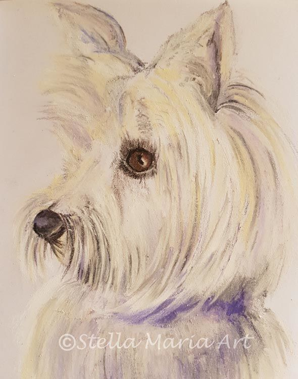 """""""lucy a pastel painting by stella maria art of solihull"""""""