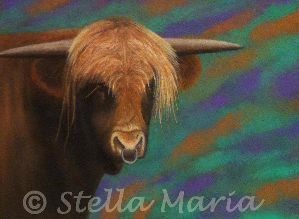 """mr bull pastel painting by stella maria art solihull"""