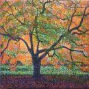 Acers, Westonbirt - sold