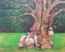 Tree Study, Knole, Sevenoaks, Kent