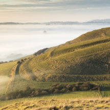 Roundway mists