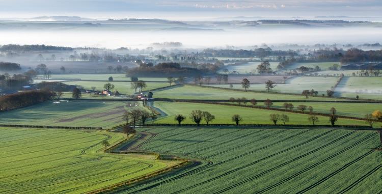 Pewsey Vale Dawn mist