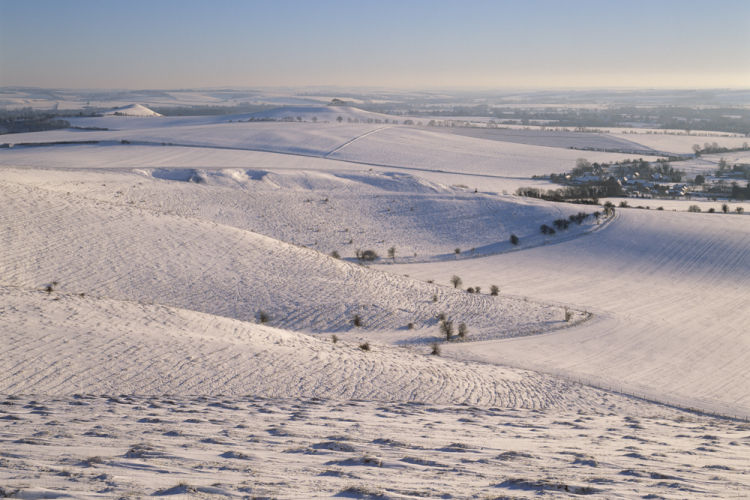 Pewsey Downs Winter