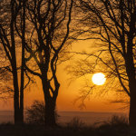 Wiinter Sunrise Salisbury Plain