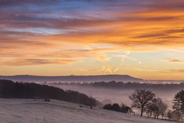 Sunrise over Roundway Down