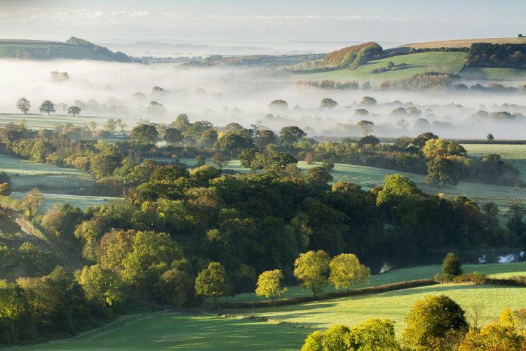 Autumn Mists Bulbarrow Dorset