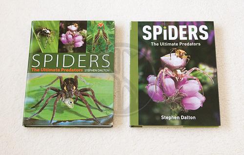 SPIDERS The Ultimate Predators