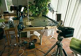 setup frog