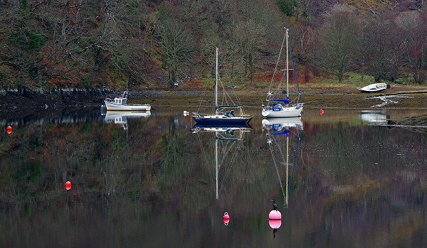 Boats in Bishop's Bay