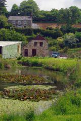 Trungle Mill