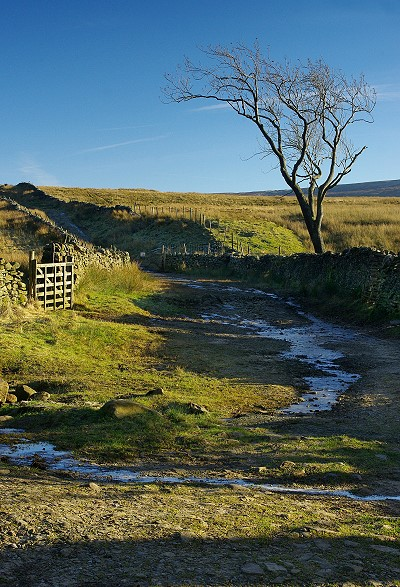 View away from Bullpot Farm