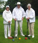 Anyone for Croquet?