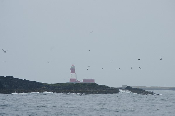 View Towards Longstone Lighthouse