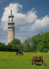 Heaton Park and the BT Tower