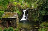 Rydal Force