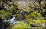 Afon Goedol