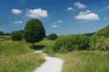 Fewston Reservoir Path